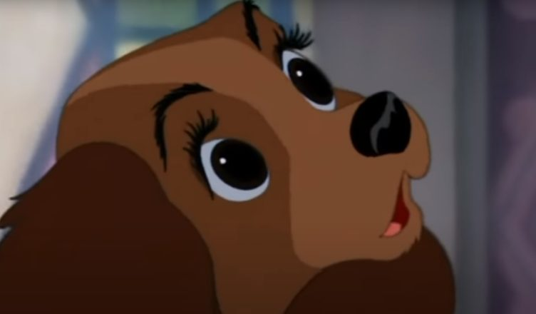 What Is A Baby Song Lyrics Lady And The Tramp Animation Songs